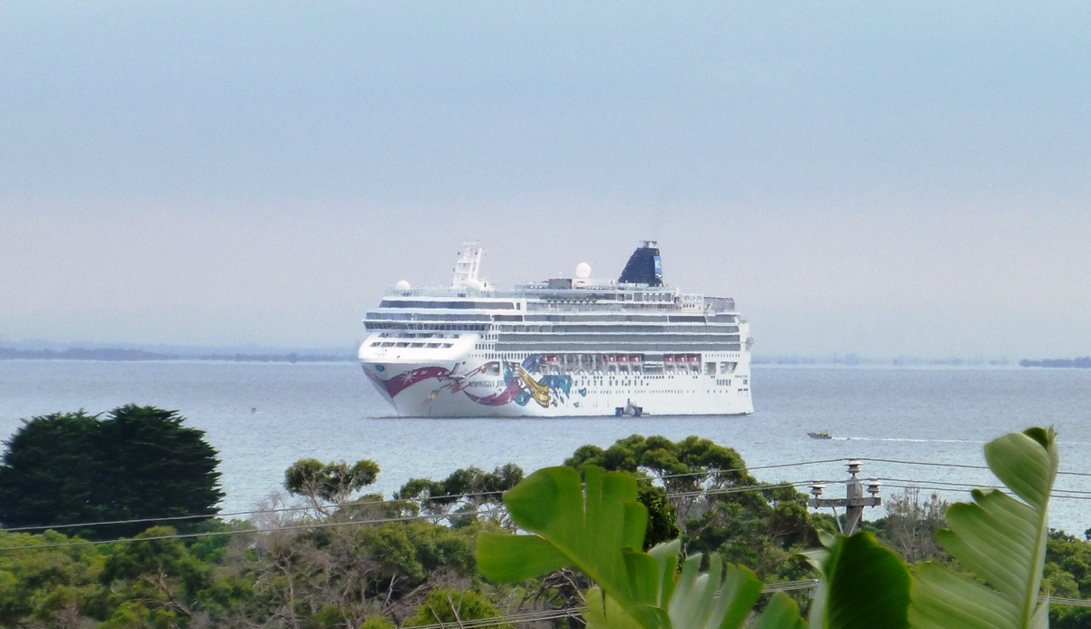 Portarlington Cruise Ship Jan 2018